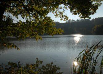 Foto: Archiv Natur- und Geopark Vulkaneifel GmbH