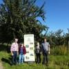Ernte von Streuobstbäumen versteigert