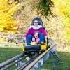 Goldener Herbst im Eifelpark