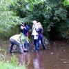 Jagd nach Fischen und Würmern