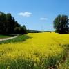 Eifelverein präsentiert neue Wanderkarte