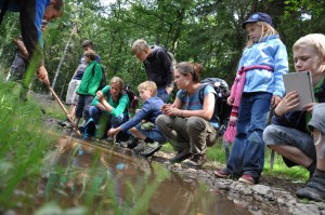 Auf begleiteten Wanderungen können Kinder Geheimnisse am Wegesrand lüften und Neugier auf die Schönheit der Natur entwickeln. Foto: Guido Braun