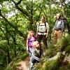 Voten für den Wildnis-Trail