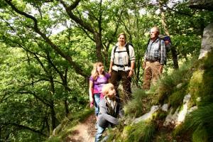 Mehr als 4.000 Wanderer haben den Wildnis-Trail seit seiner Einführung 2007 gebucht. Die 85 Kilometer lange Strecke führt einmal von Süd nach Nord durch den Nationalpark Eifel und die Vielfalt seiner Landschaftstypen. Foto: Nationalparkverwaltung Eifel/L. Voigtländer