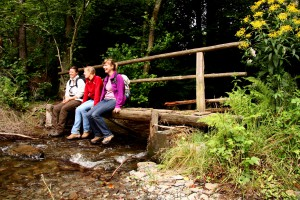 Der Wildnis-Trail ist bei der Rureifel-Tourismus auch als Bildungsurlaub buchbar. Foto: Nationalparkverwaltung Eifel/ U. Giesen