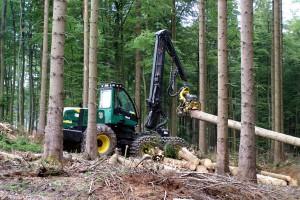Die Waldarbeit und die Holzernte in Zeiten des Klimawandels sind eines der Themen am Donnerstag, 16. Juni ,im Holzkompetenzzentrum Rheinland. Foto: HKZ/pp/Agentur ProfiPress