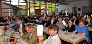 In einer harmonisch verlaufenen Vertreterversammlung entlasteten 88 Delegierte Vorstand und Aufsichtsrat nach den entsprechenden Jahresberichten einstimmig - und wählten zwei Aufsichtsräte neu. Foto: Manfred Lang/pp/Agentur ProfiPress