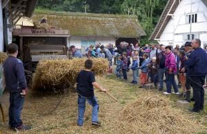 """Mit seiner Veranstaltung """"Nach der Ernte"""" erinnert das LVR-Freilichtmuseum Kommern an die vielfältigen Arbeiten, die bei Bauern und Handwerkern auf dem Dorf im Spätsommern anfielen. Foto: Hans-Theo Gerhards/LVR/pp/Agentur ProfiPress"""