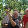Ausgebildete Obstbaumwarte beraten in allen Fragen