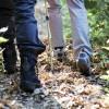Der Nordeifel-Herbst wird bunt