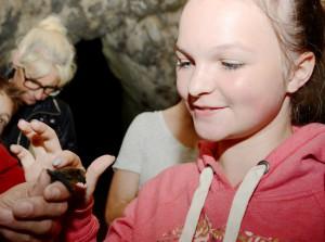 Vorsichtig dürfen die Kinder die Fledermäuse streicheln, bevor sie wieder in die Nacht entlassen werden. Foto: Sarah Winter/pp/Agentur ProfiPress