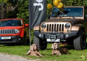 Fans von Geländewagen und Hundefreunde kommen gleichermaßen auf ihre Kosten. Foto: Mario Kaspers/pp/Agentur ProfiPress
