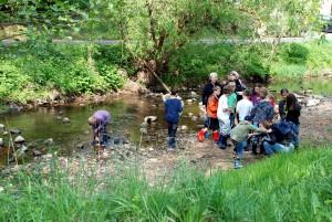 Während der Herbstferien fangen und bestimmen die Kinder Wassertiere und stellen die Gewässergüte fest. Foto: Naturzentrum Nettersheim/pp/Agentur ProfiPress