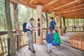 """""""Der Wilde Weg"""" ist spannend für Groß und Klein, hier bei einer Führung mit einem Ranger der Nationalparkverwaltung Eifel. (Foto: NeT)"""