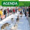 Winter-Highlights in Ostbelgien – mit oder ohne Schnee