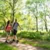 """Aufruf des Deutschen Wanderverbandes zum Mitmachen beim """"Tag des Wanderns"""" am 14. Mai"""