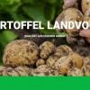EIFEL Kartoffel Produzent Landvogt gibt weiter Gas